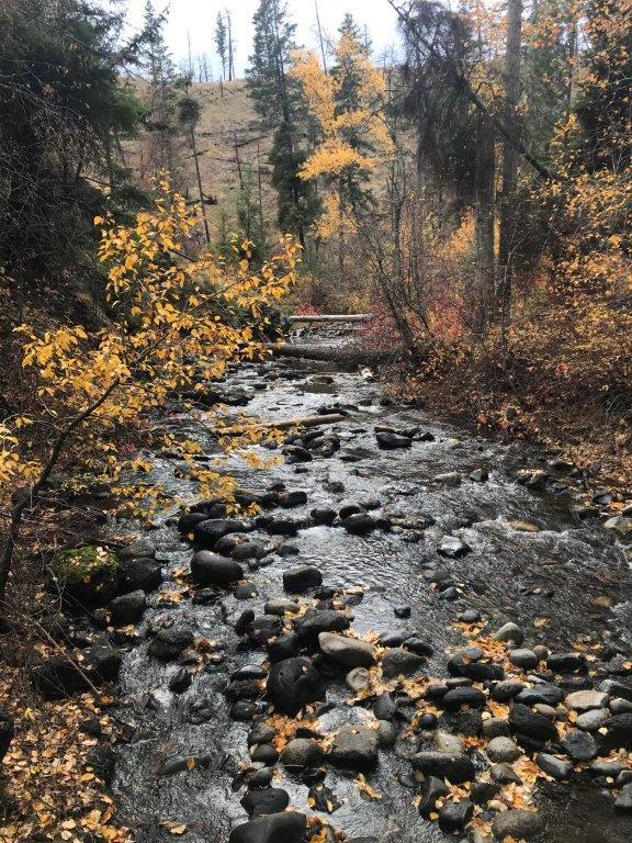 24 Bear creek colours